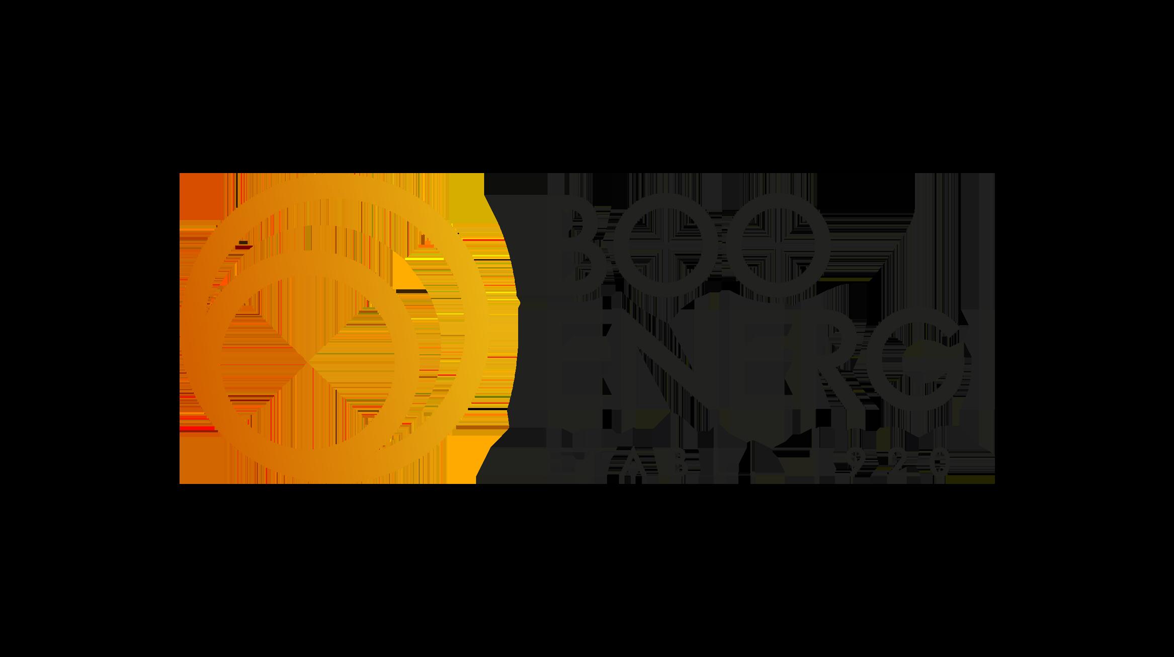 partners-logo-booenergi